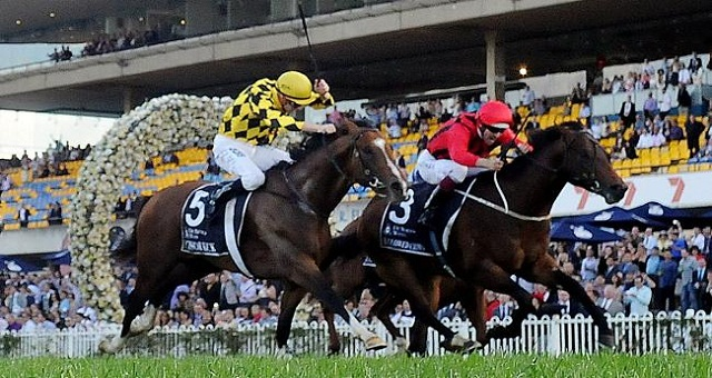Hallowed Crown. Image courtesy of : www.heraldsun.com.au